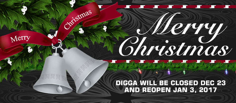 Digga wishes you a Merry Christmas and a Happy New Year - Digga Europe